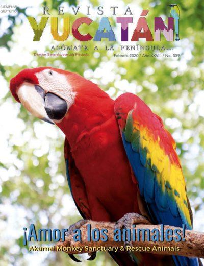 Portada Revista Yucatan edicion febrero 2020